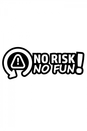 Autoaufkleber - No Risk No Fun